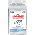 Зоотовары Киев. Royal Canin Киев. Royal Canin (Роял Канин) QUEEN (Квин) 4 кг