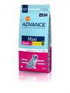 Зоотовары Киев. Собаки Киев. Advance (Эдванс) Dog Maxi Senior 3 кг