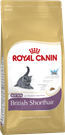 Зоотовары Киев. Кошки Киев. Royal Canin (Роял Канин) Kitten British Shorthair (Котята британцев) 0,4 кг