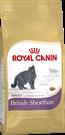 Зоотовары Киев. Кошки.Сухой корм. Royal Canin (Роял Канин) British Shorthair (британцы) 2 кг