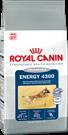 Зоотовары Киев. Собаки Киев. Royal Canin (Роял Канин) Energy (Энерджи) 4300 15 кг