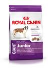 Зоотовары Киев. Собаки Киев. Royal Canin (Роял Канин) Giant Junior (юниор) 4 кг