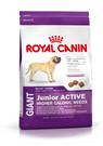 Зоотовары Киев. Собаки.Сухой корм.Щенки. Royal Canin (Роял Канин) Giant Junior (юниор) ACTIVE 15кг