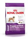 Зоотовары Киев. Собаки Киев. Royal Canin (Роял Канин) Giant Puppy (щенки) ACTIVE 15 кг