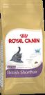 Зоотовары Киев. Кошки Киев. Royal Canin (Роял Канин) Kitten British Shorthair (Котята британцы) 10 кг