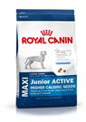 Зоотовары Киев. Собаки Киев. Royal Canin (Роял Канин) Maxi Junior Active (Макси юниор актив) 4 кг