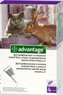 Зоотовары Киев. Кошки.Ветеринария.Средства от блох и клещей. Advantage (Адвантейдж) 80